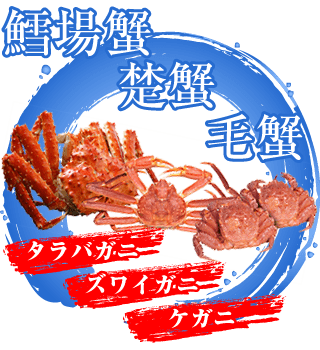 鱈場蟹・楚蟹・毛蟹 | たらばがに・ズワイガニ・ケガニ